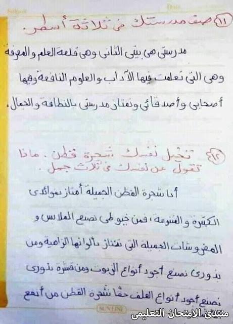 exam-eg.com_157431559695696.jpg