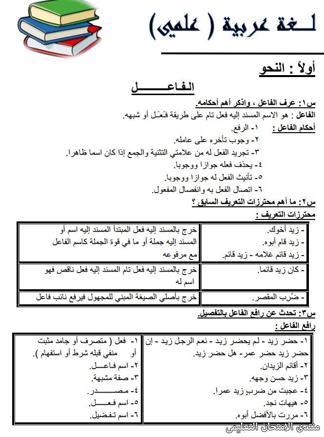 exam-eg.com_157435795304878.jpg