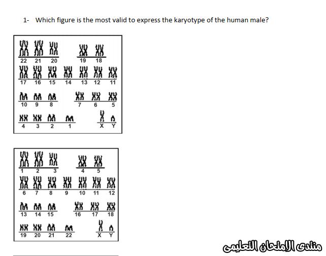 exam-eg.com_157607521637723.png