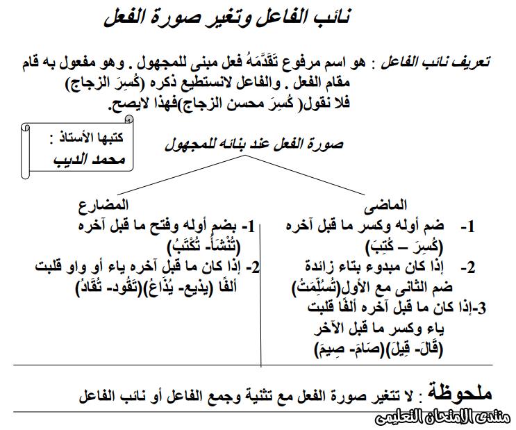 exam-eg.com_157652033196631.png