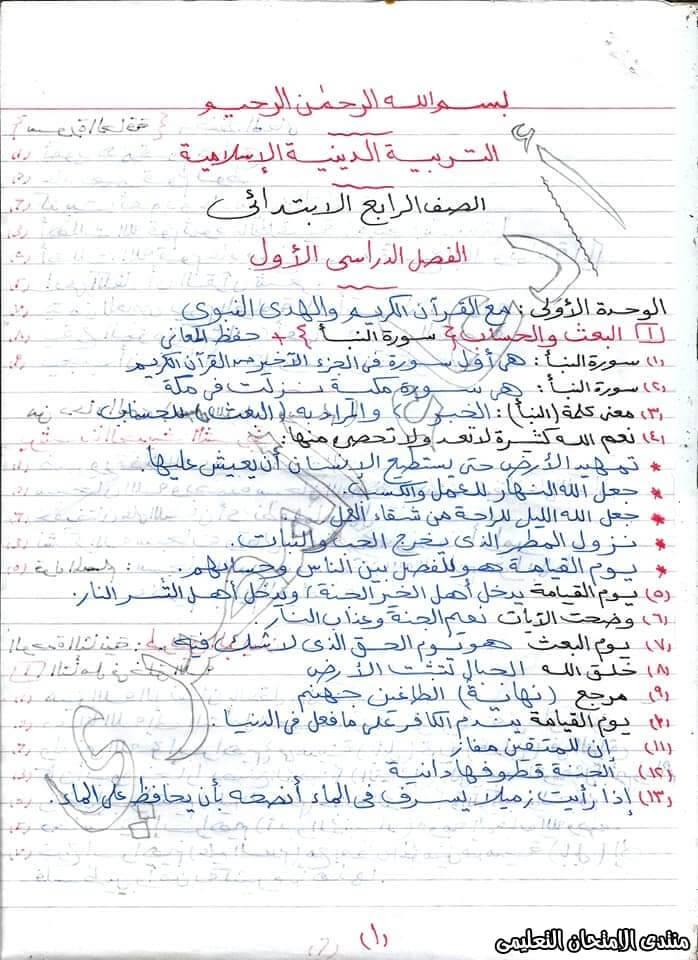 exam-eg.com_157652308415721.jpeg