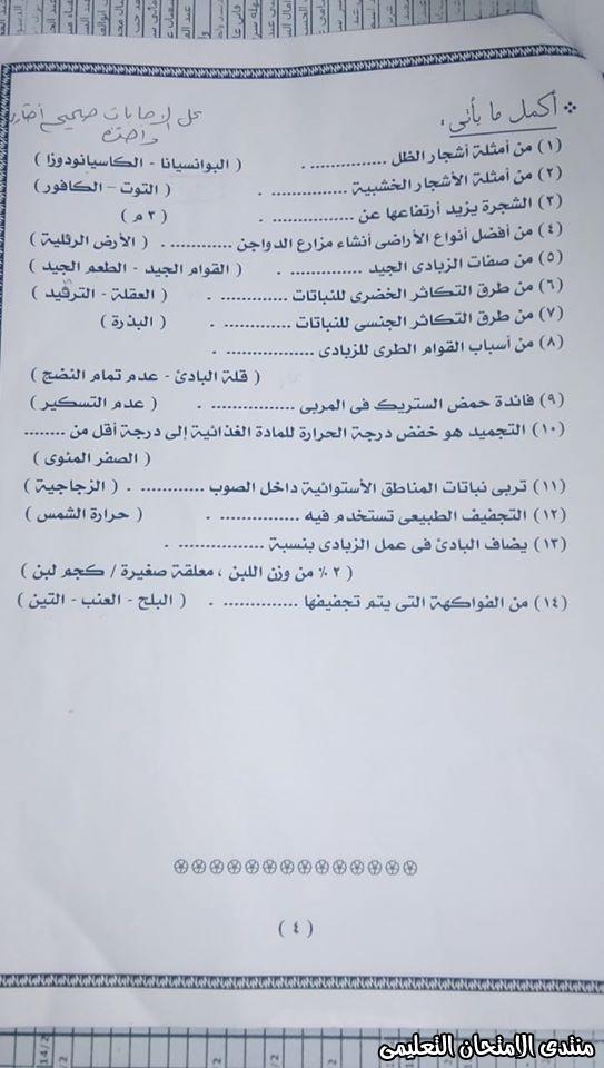 exam-eg.com_157715028034482.jpg