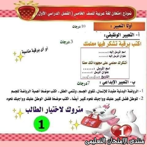 exam-eg.com_157737265407031.jpg