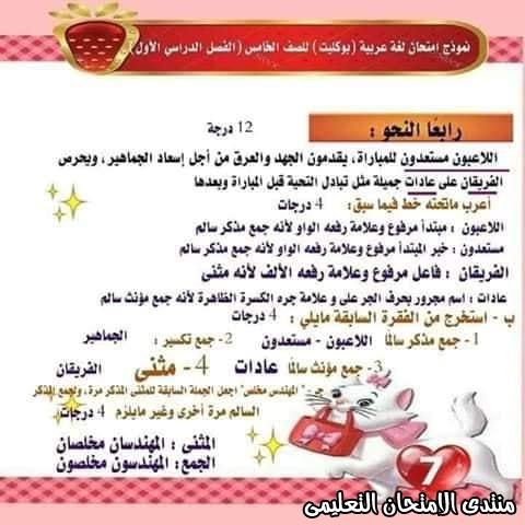 exam-eg.com_157737265416317.jpg