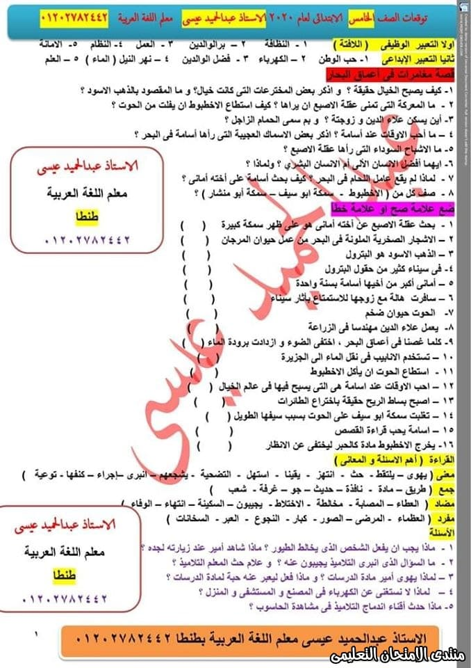 exam-eg.com_157737321434512.jpg