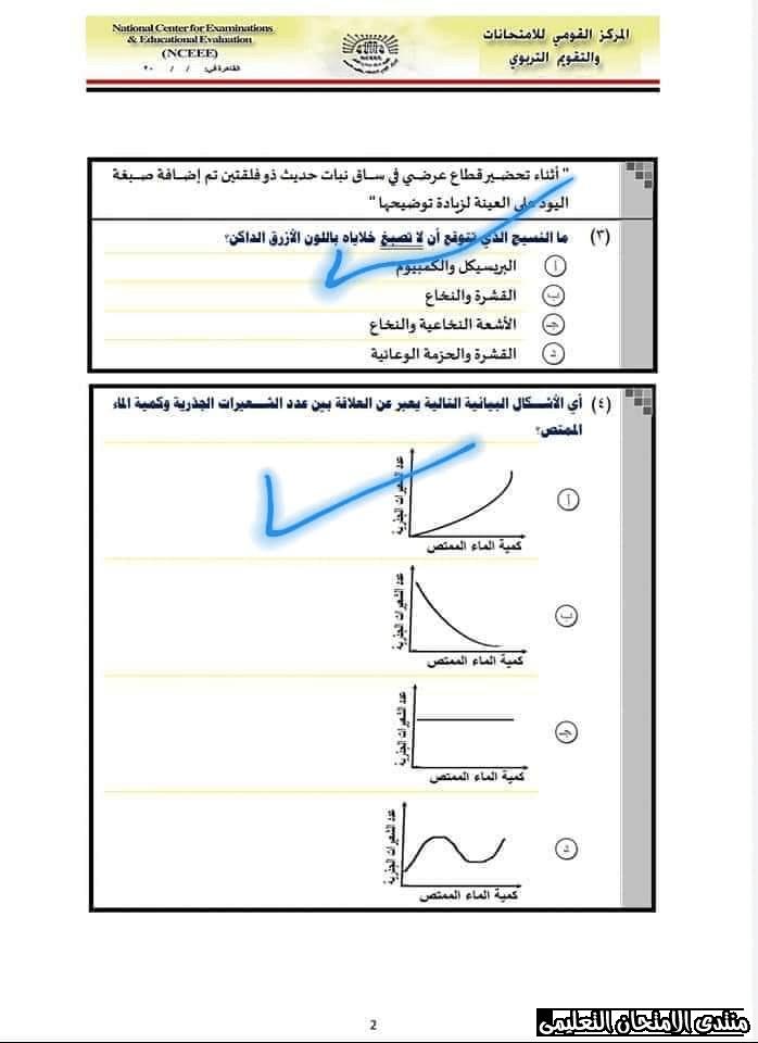 exam-eg.com_157767285047752.png