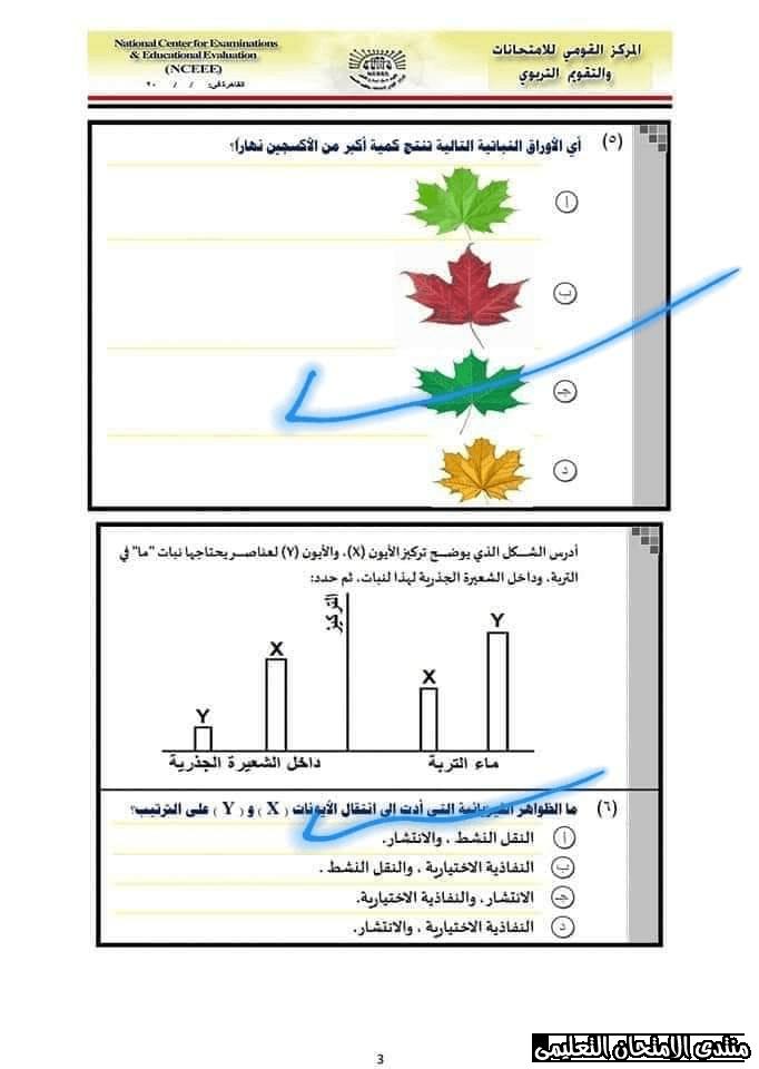 exam-eg.com_157767285051073.png