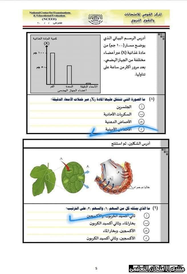 exam-eg.com_15776728505755.png