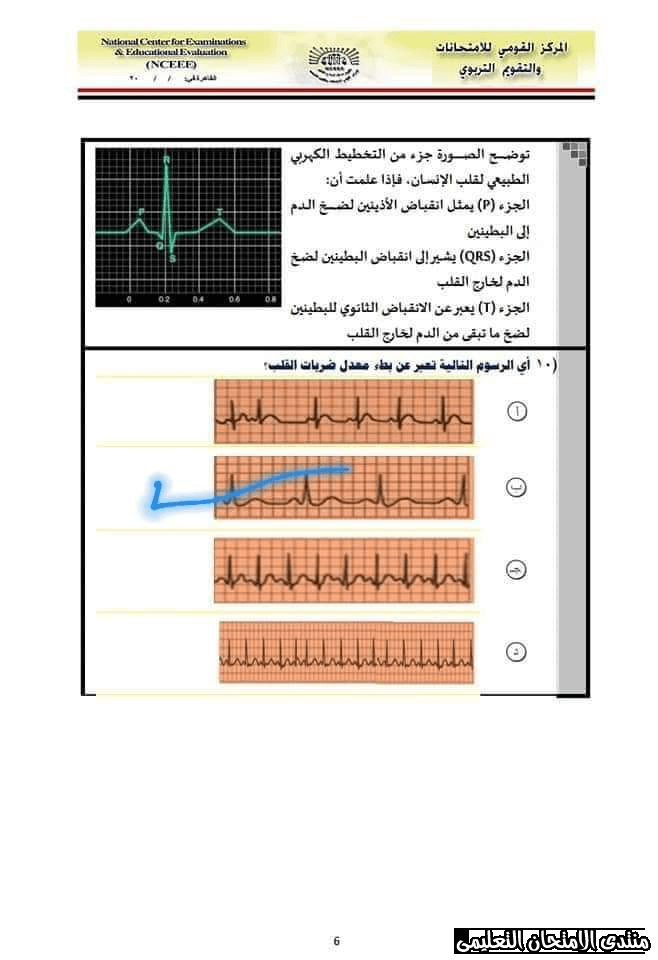 exam-eg.com_157767285061116.png