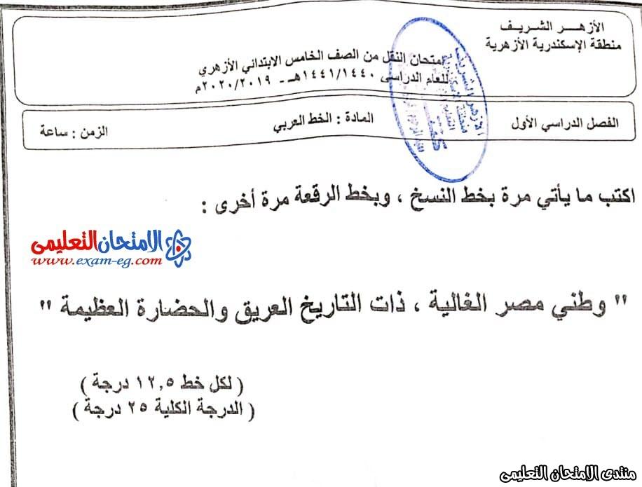 امتحان خط 5 ابتدائى الاسكندرية