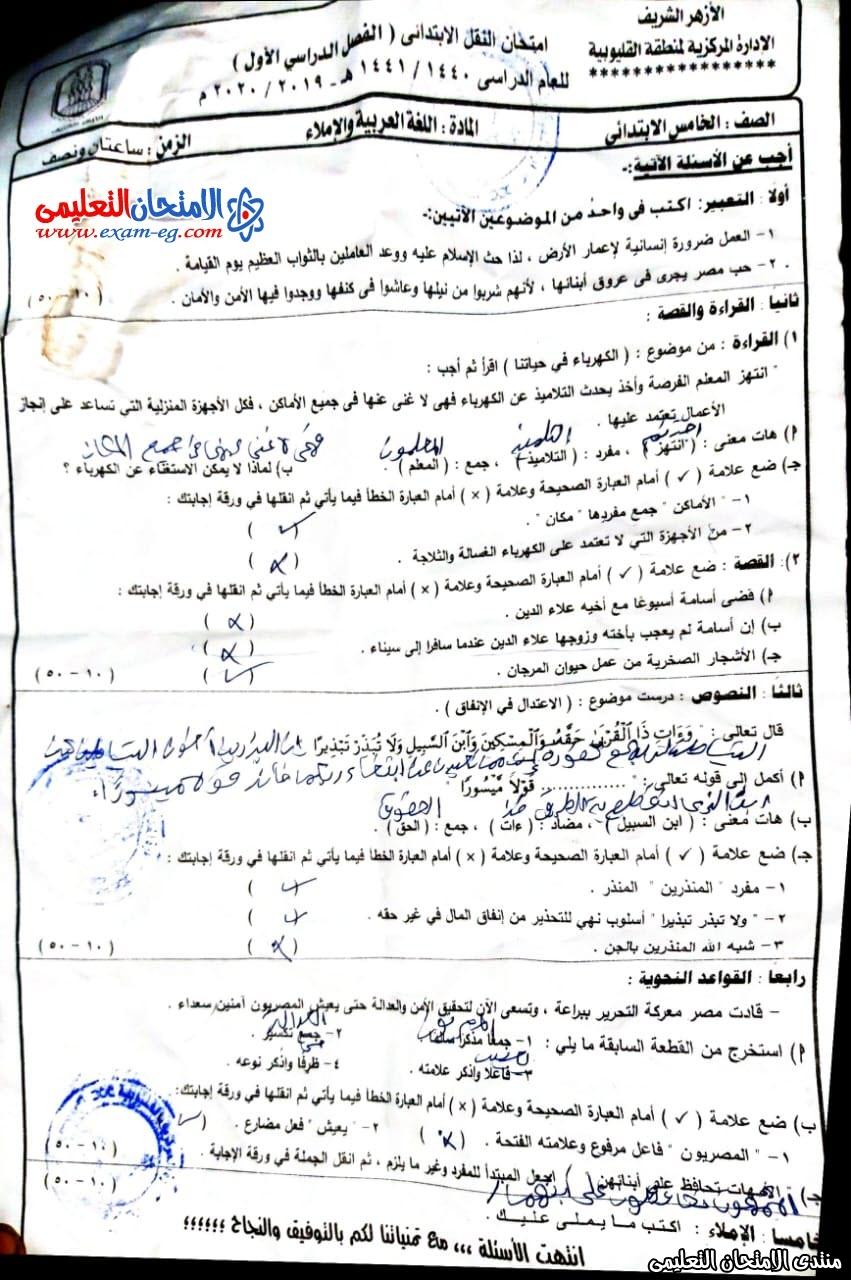 امتحان عربى 5 ابتدائى القليوبية