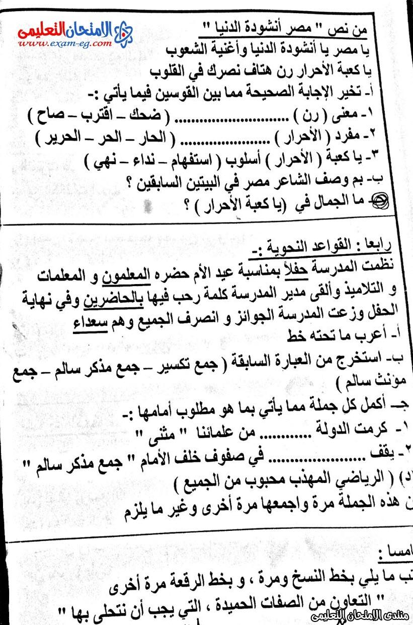 امتحان لغة عربية 5 ابتدائى نصف العام  محافظة القاهرة 3