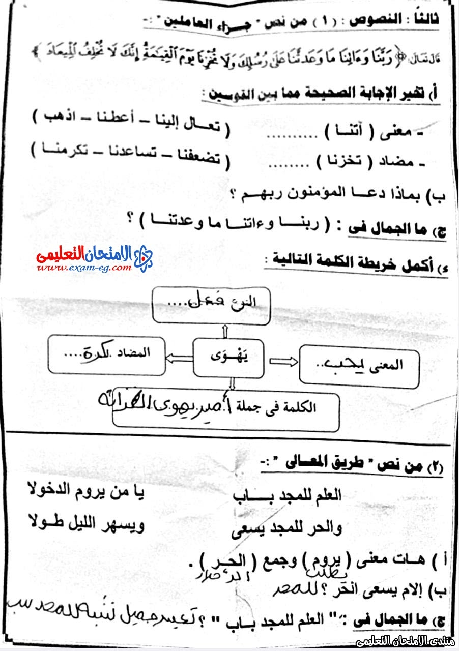امتحان لغة عربية 5 ابتدائى نصف العام  المطرية 3