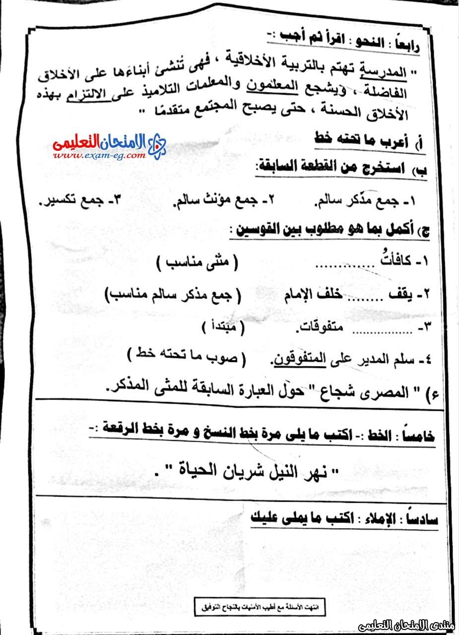 امتحان لغة عربية 5 ابتدائى نصف العام  المطرية 4