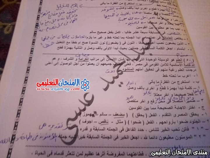 exam-eg.com_157851260477972.jpg