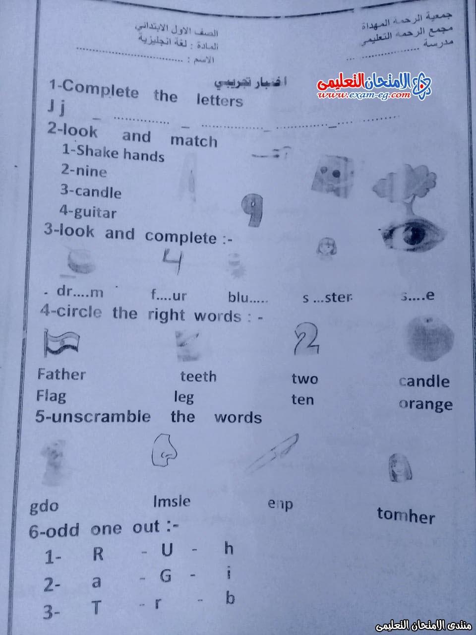 exam-eg.com_157854606807121.jpeg