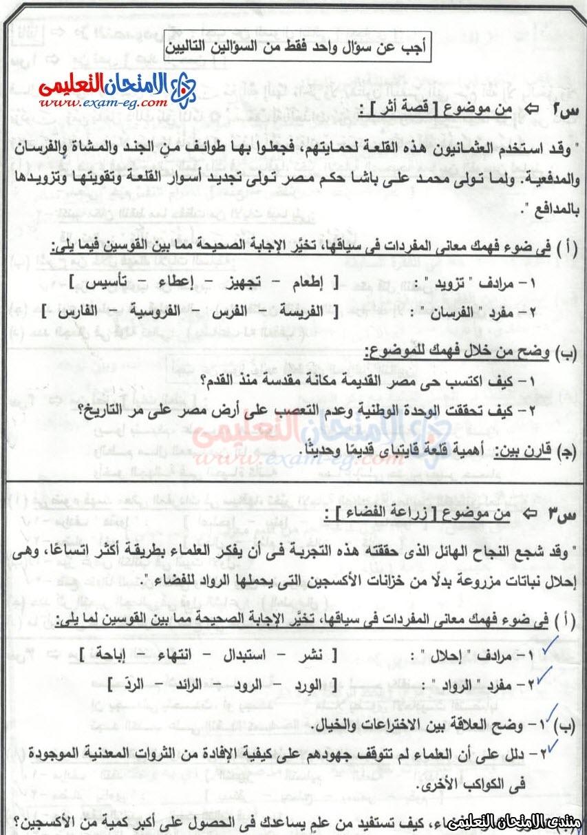 exam-eg.com_15793875667633.jpeg