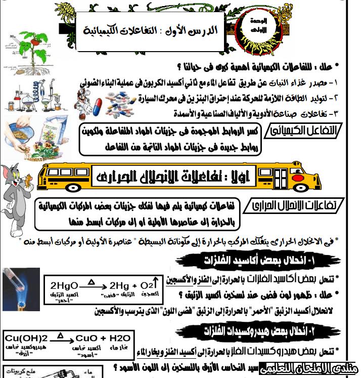 exam-eg.com_158142947660616.png