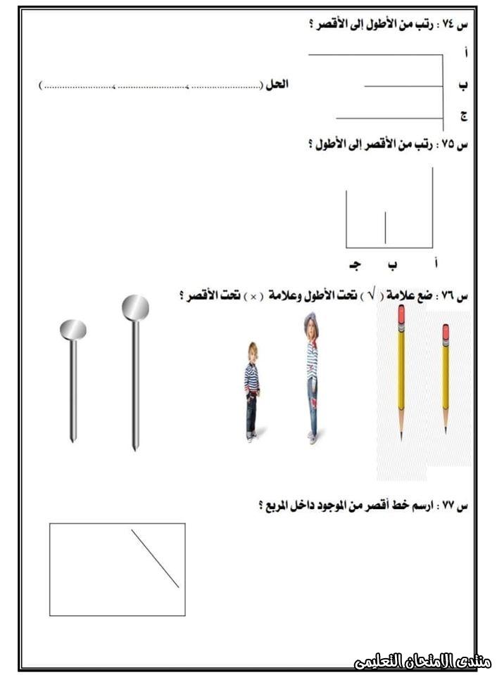 exam-eg.com_15823874637461.jpg