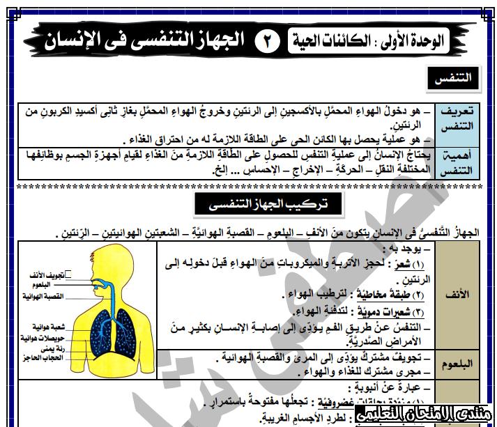 exam-eg.com_158368522262911.png