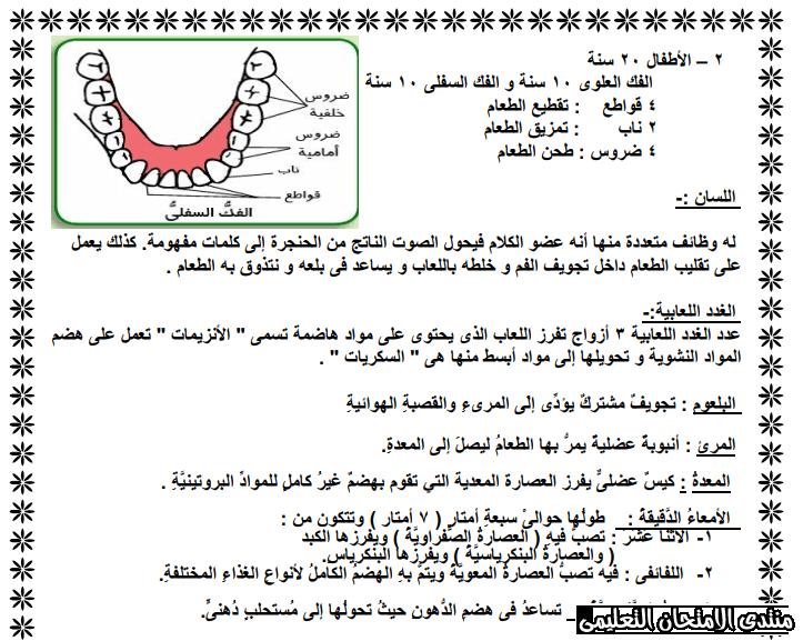 exam-eg.com_158368672289341.png