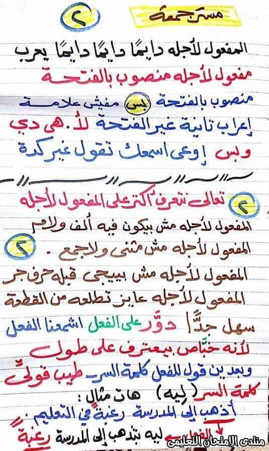 exam-eg.com_15845695375112.jpg