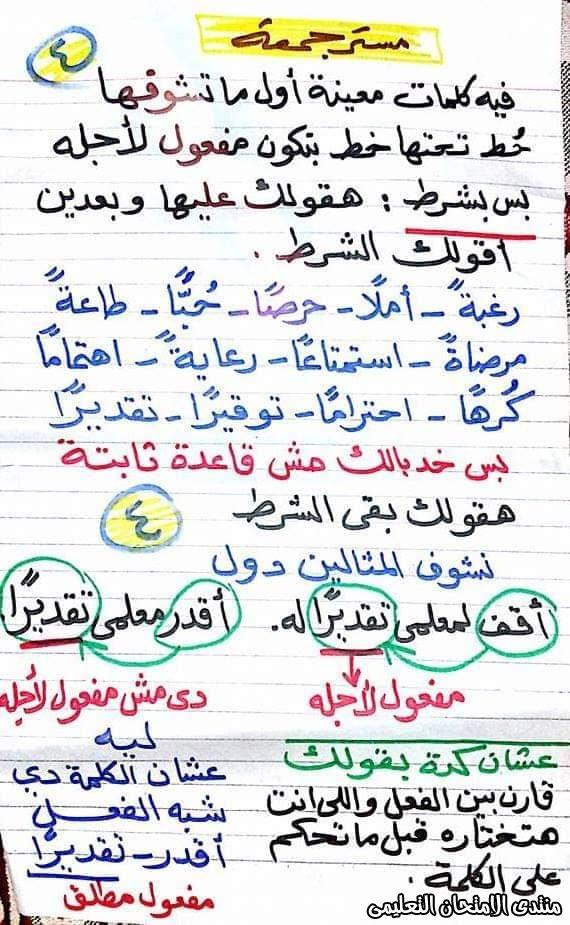 exam-eg.com_158456953757934.jpg