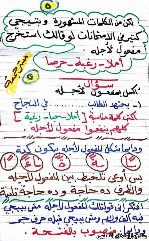 exam-eg.com_158456953761155.jpg