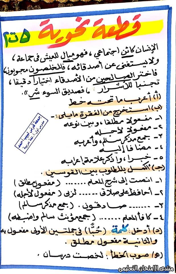 exam-eg.com_158457744484891.jpg