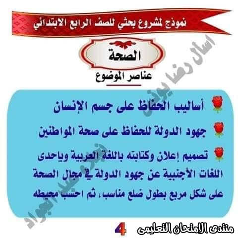 exam-eg.com_158659829901242.jpg