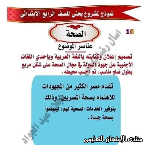 exam-eg.com_15865982990998.jpg