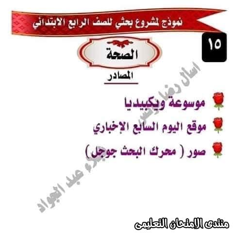 exam-eg.com_1586598299167613.jpg