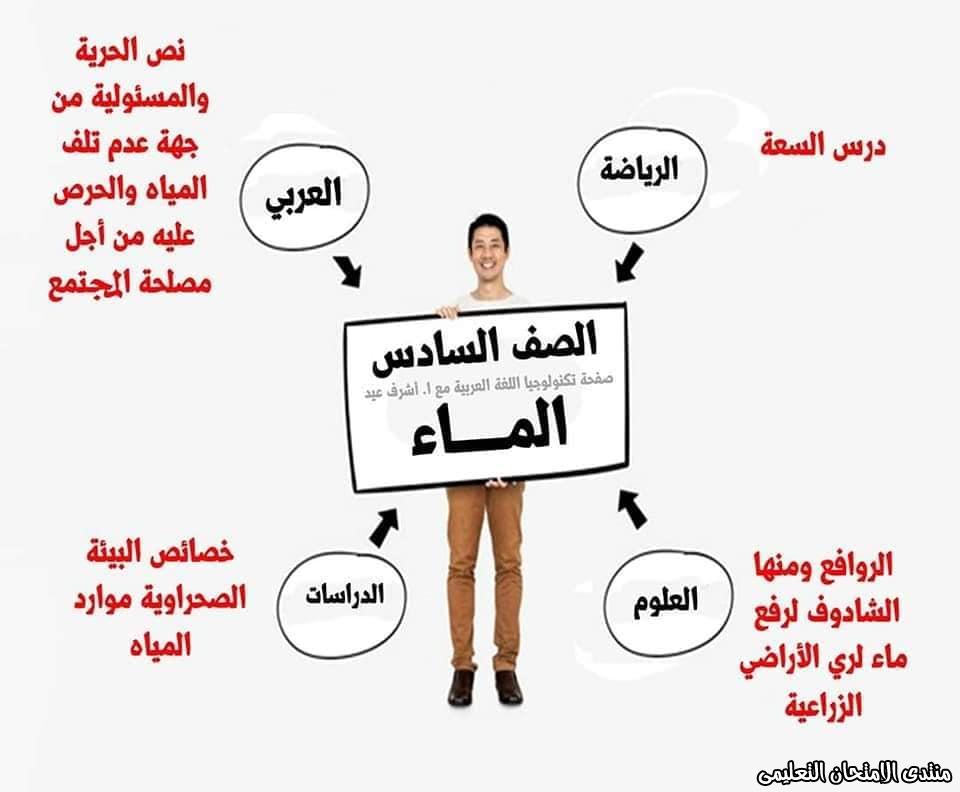 exam-eg.com_158664082267624.jpg