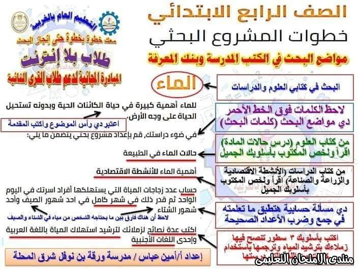 exam-eg.com_158748211253721.jpg