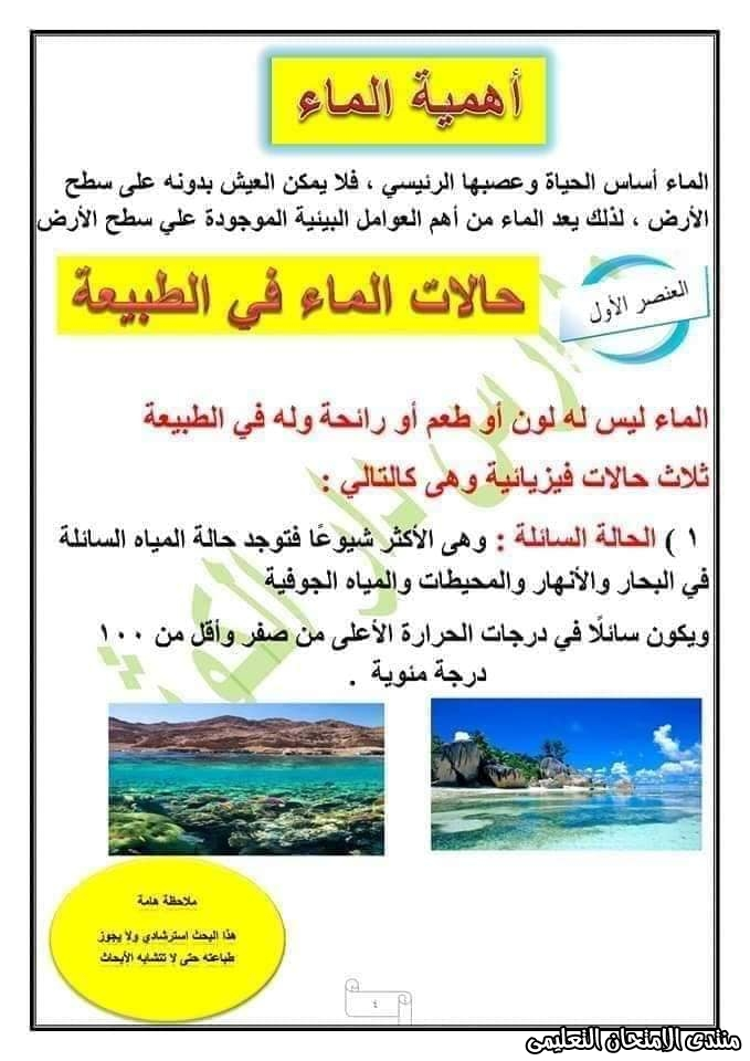 exam-eg.com_158750559604415.jpg