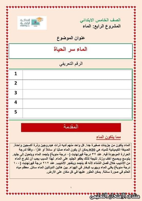 exam-eg.com_158768058753011.jpg
