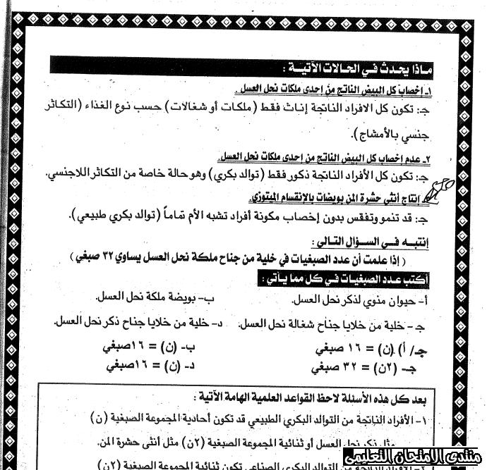 exam-eg.com_159318140773181.png