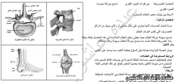 exam-eg.com_159338138351391.jpg