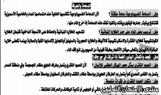 exam-eg.com_159338254406231.jpg