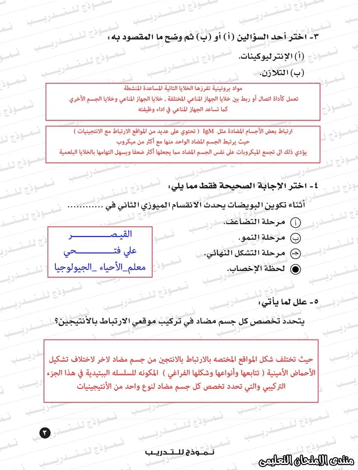 exam-eg.com_159338323412523.jpg