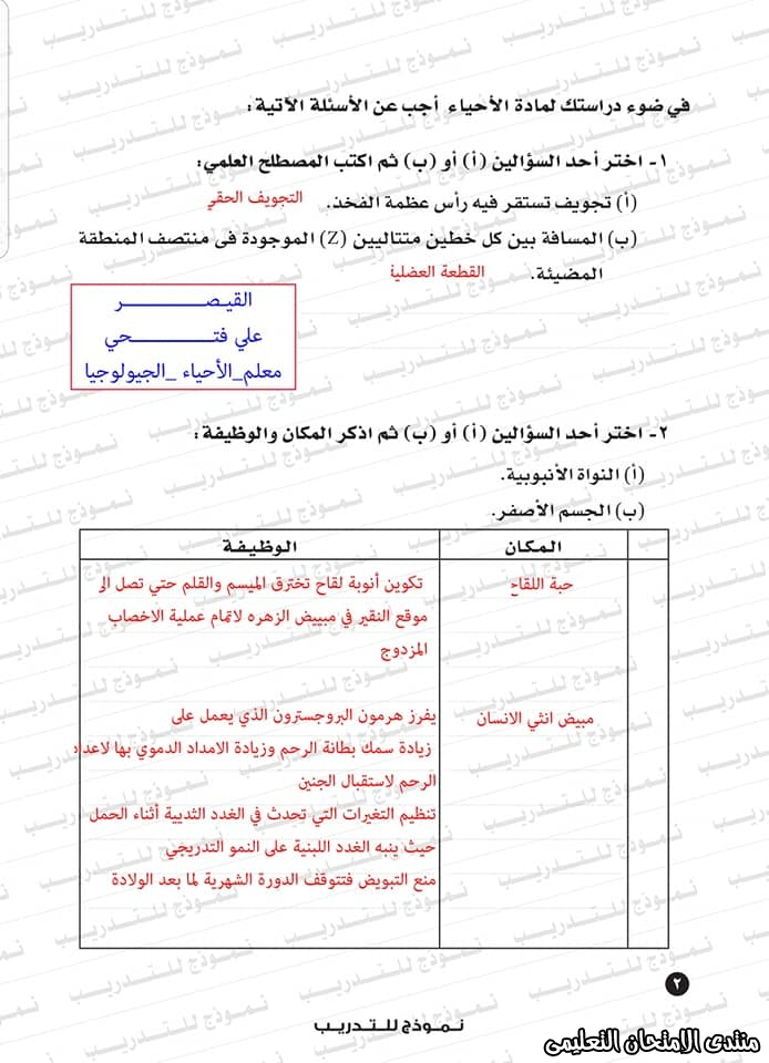 exam-eg.com_159338323419045.jpg