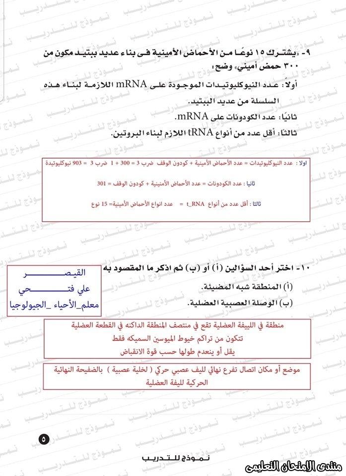 exam-eg.com_159338323425467.jpg