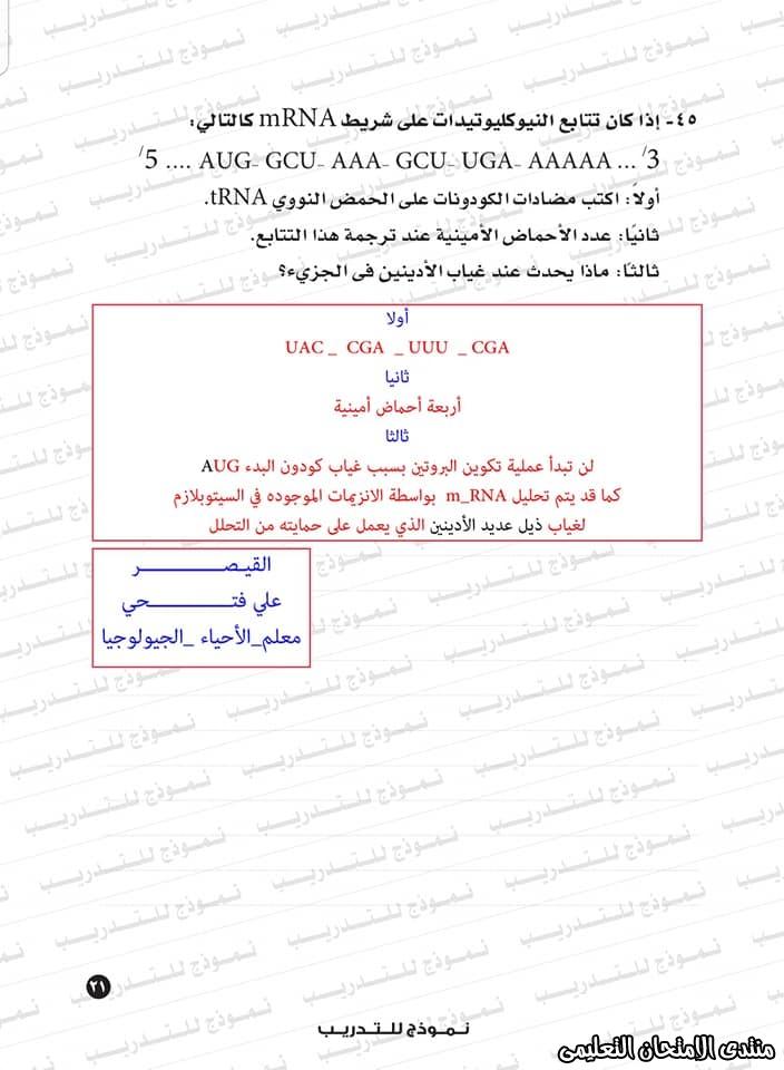 exam-eg.com_159338323428958.jpg