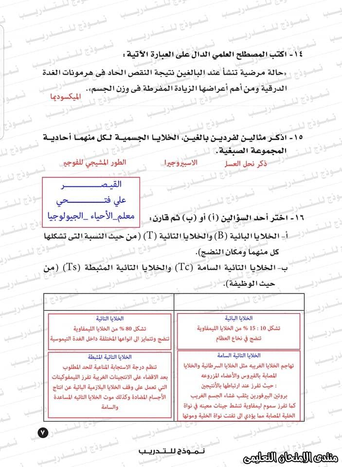 exam-eg.com_159338323431989.jpg