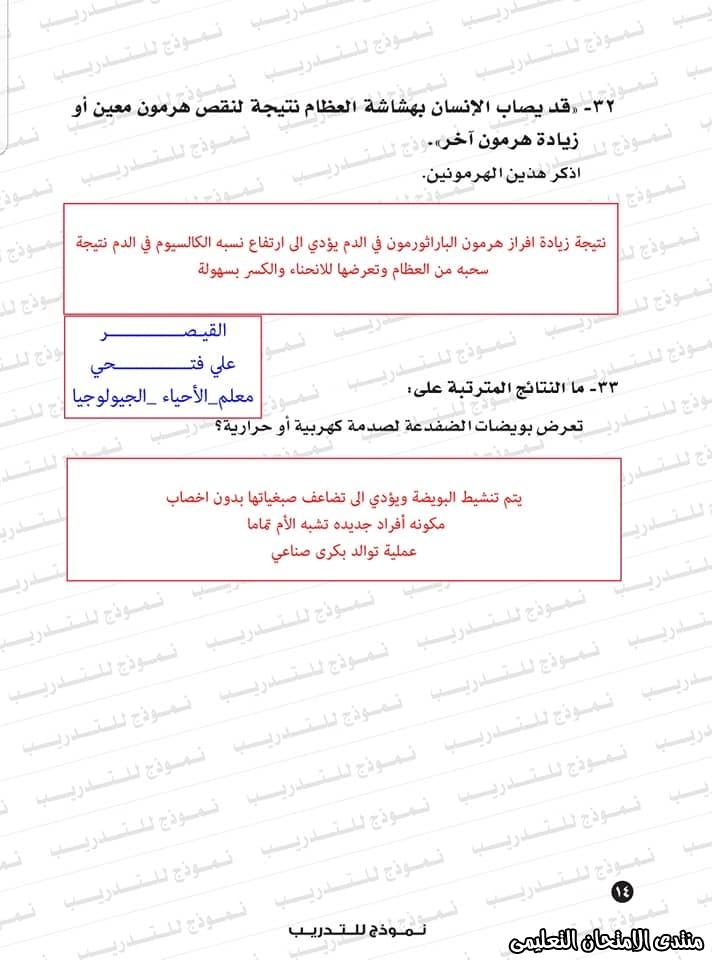 exam-eg.com_1593383234352610.jpg