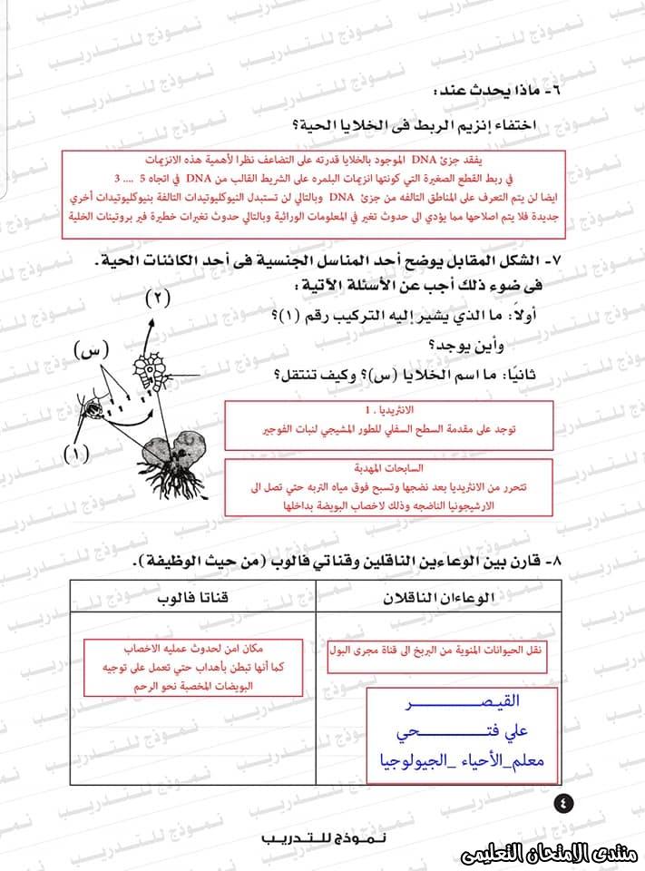 exam-eg.com_1593383234384211.jpg