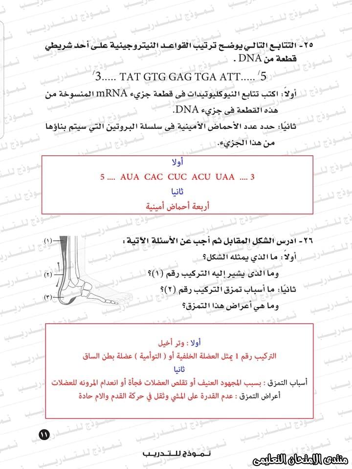 exam-eg.com_1593383234418712.jpg