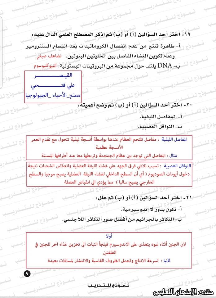 exam-eg.com_1593383234519615.jpg