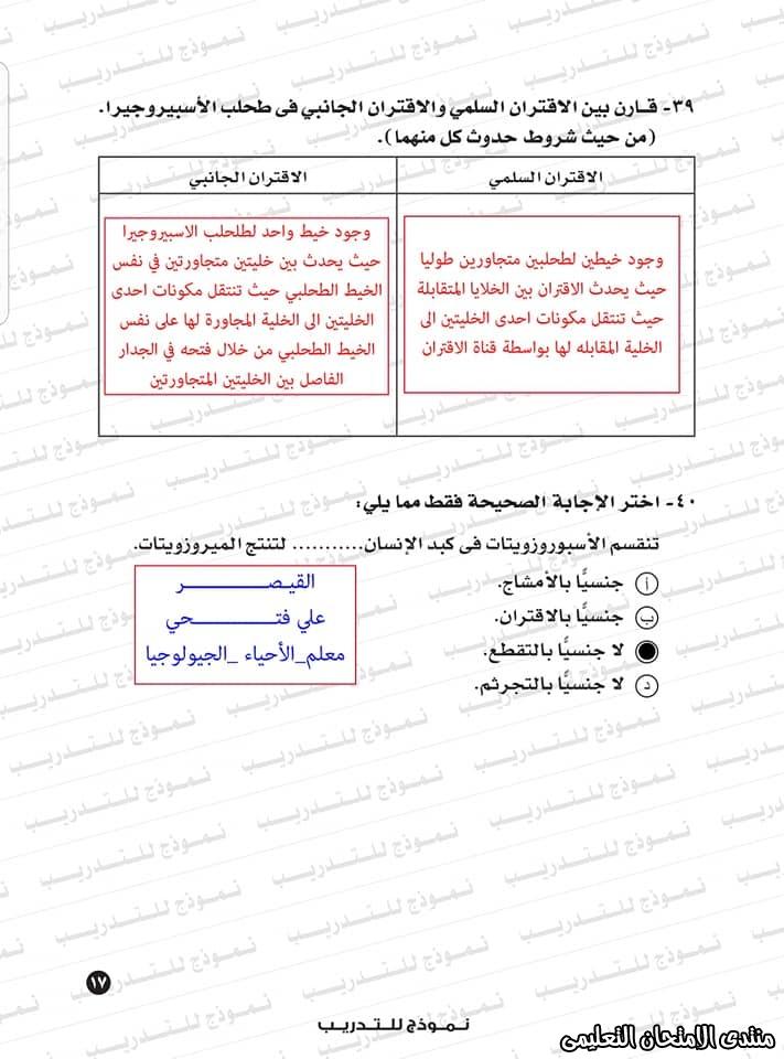 exam-eg.com_1593383234554516.jpg