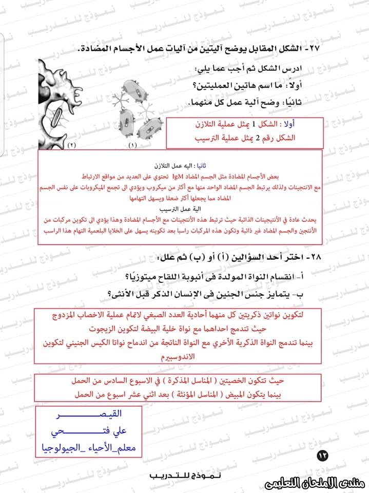 exam-eg.com_1593383234587717.jpg